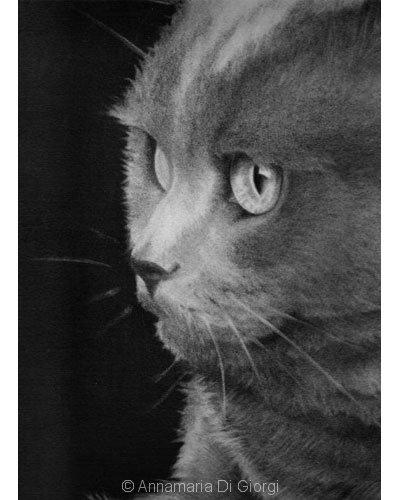 Carboncino su carta - F.to 35x24,5